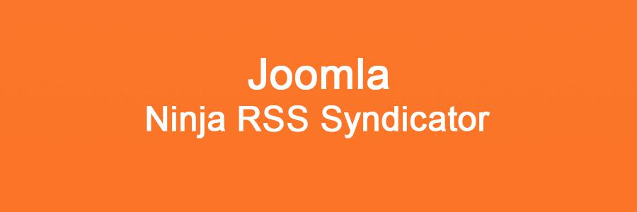 Ninja RSS Syndicator для Joomla 3.0